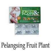 Fruit And Plant ORIGINAL Obat Pelangsing Badan Herbal (14213213) di Kota Semarang
