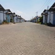 Gudang Mutiara Tambak Langon Surabaya Barat (14280135) di Kota Surabaya