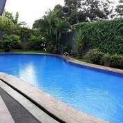 Rumah Adem Asri Ada Kolam Renang Cocok Untuk Villa (14324379) di Kota Bekasi