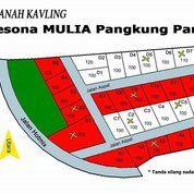 Pesona Mulia Pangkung Paruk (14372169) di Kab. Buleleng