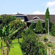 Investasi Jaman Now Villa Cibogo Farm