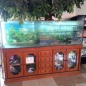 Aquarium Ukuran Besar Siap Pakai