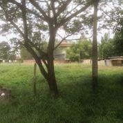 Tanah Di Jakabaring, Palembang Sumatera Selatan