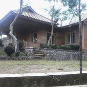 Kebun Manggis Dan Villa Siap Pakai Di Bojong Purwakarta Luas Tanah 1,6 Ha (14513535) di Kab. Purwakarta