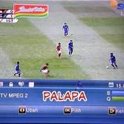 Parabola Matrix Soccer (14614039) di Kab. Bantul