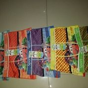 Boxer Sports Anak (14639053) di Kab. Jepara