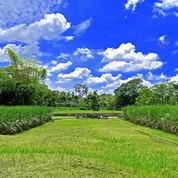 Tanah Kavling Strategis Bisa Diangsur Bonus Fasum, Pakisaji, Malang
