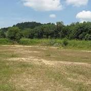 Lahan Tanah Di Langkat (14790587) di Kab. Langkat