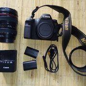Canon 6d + Lensa 24-105mm F4.0 L + 2 Battery Ori (14802185) di Kota Depok