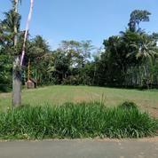 Tanah Kavling Strategis Turen Malang (14827973) di Kab. Malang