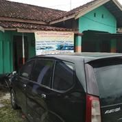 Travel Palangka Sampit Pangkalambun (14932265) di Kota Banjarbaru