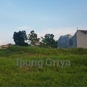 Sendangmulyo Semarang Kavling Siap Bangun (15245521) di Kota Semarang