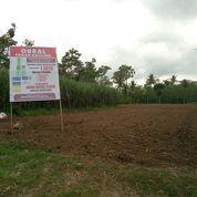 Tanah Kavling Strategis Pagelaran Malang (15419837) di Kab. Malang