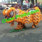 Klub Barongsai Tan Ceng Bok (15622685) di Kota Jakarta Pusat