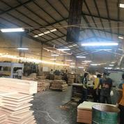 LANGKAAH Pabrik Raya Betro Sedati 2Gudang Produksi, Ciamik ADA Kantor (15658797) di Kab. Sidoarjo