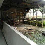 Kost Deket Kampus (15667817) di Kota Bogor