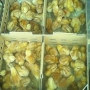 Doc Bibit Ayam Petelur Gratis Ongkir Khusus Daerah Jambi (15703809) di Kota Palembang