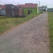 Sedia Tanah Murah Pinggir Jalan Di Slawi
