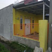 Rush Piggies Jalan (15849709) di Kota Bandung