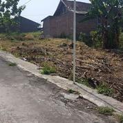 Kavling Siap Bangun Gemah Amposari Hanya 162,5 Jt (16009477) di Kota Semarang