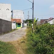 Tanah Kering 6160 M2 Wonorejo, Gondangrejo, Karanganyar, Surakarta (16053289) di Kab. Karanganyar