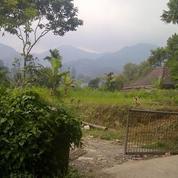 Tanah Cocok Untuk Vila Dan Hotel Di Cilember Cisarua Puncak Bogor (16139537) di Kab. Bogor