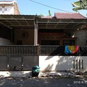Rumah Siap Huni Di Medokan Rungkut Surabaya Dekat MERR UPN 600 Jutaan (16183525) di Kota Surabaya