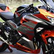 Ninja 250 2018 SE MDP Km 800 Full Ori Knalpot Akrapovic Original Plat N Probolinggo (16339661) di Kota Surabaya