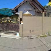 Dikontrakan Rumah Di Akasia Belakang Kampus (16517677) di Kota Denpasar