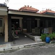 Rumah Minimalis Layak Huni, Ubud Permata Timur, Lippo Karawaci, (Nego Tipis) (16570651) di Kab. Tangerang