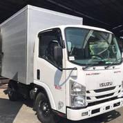 Isuzu Elf NLR Engkel CDE Box Dan Bak Tahun 2019 ( Unit Baru )