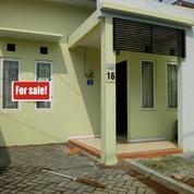 Rumah Sukolilo Dian Regency I ( Belum Pernah Dihuni ) Semi Furnished (16701023) di Kota Surabaya