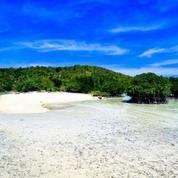 Open Trip Pulau Pahawang (16770595) di Kota Depok