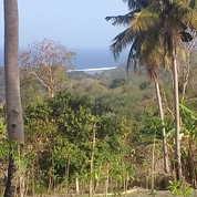 Tanah Strategis Ocean View (Pemandangan Laut)-Pantai Rua.Sumba Barat.Nusa Tenggara Timur. (16803175) di Kab. Sumba Barat Daya