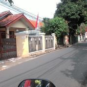 Rumah Pasar Minggu Tanjung Barat Ls.400mtr Shm 4,1m (16817851) di Kota Jakarta Selatan