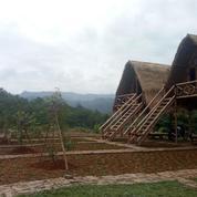 Investasi Tanah Kavling Produktif Passive Income Seumur Hidup (16850427) di Kab. Bogor