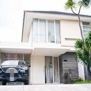 Rumah Bagus Sangat Terawat Bonus AC Di Palm Beach, Pakuwon City, Surabaya (16877483) di Kota Surabaya