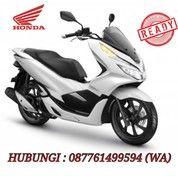 New Honda PCX 150 (16887951) di Kota Denpasar