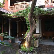 Guest House Di Kuta Akses Dekat Jalan Kaki Ke Pantai