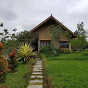 Kapan Lagi Punyak Villa MURAAH Villa Nongko Jajar Harga CIAMIK Negoo (16992003) di Kab. Pasuruan