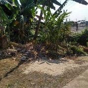 Tanah Cantik Masuk Mobil Jl.Kemang Raden Saleh (17110951) di Kota Depok