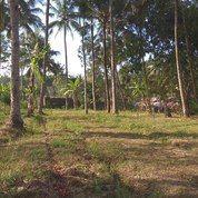 Tanah Kavling Nyaman Dan Damai, 8 Menit EXIT Tol SALATIGA (17124103) di Kab. Semarang