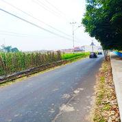 Tanah Untuk Cluster Atau Invest 5 Menit Dari Alun-Alun Tarogong Garut (17154743) di Kota Bandung