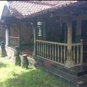 Beli Rumah Antik Bonus Tanah Nitikan Umbulharjo Pusat Kota (17213287) di Kota Yogyakarta