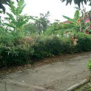Kavling Luas - Nyaman Dan Tenang - Cocok Untuk Hunian Di Kota Ungaran (17276975) di Kab. Semarang