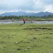 Tambak Siap Pakai Di Sumbawa (17277239) di Kab. Sumbawa