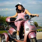 SEPEDA MOTOR LISTRIK MAGNUM TRICYCLE CARMEL 3 (17287139) di Kota Surabaya