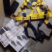 Body Harness DBI SALA USA Size XL Safety Lanyard Berkwalitas Dan Berstandard (17420191) di Kota Jakarta Timur
