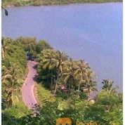 Tanah Bukit Di Lombok Bagus Untuk Villa