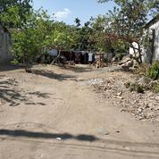 Tanah Strategis Bentuk Persegi Dekat Jl Kusumanegara Semaki Yogyakarta (17438671) di Kota Yogyakarta